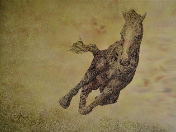 Saint Horse