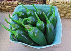 2015 peppers