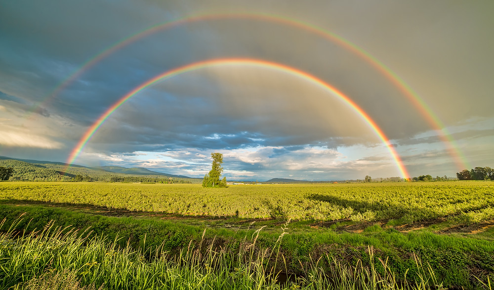 A rainbow over a field in the countryside.