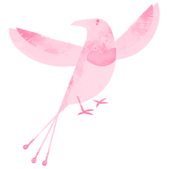 %20Colorful%20Bird_edited.png