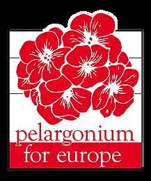 New-logo-2017 PfE_Logo_rgb_small copy.pn