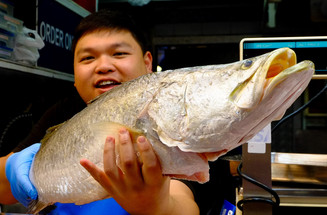 Fishmonger, Melbourne markets
