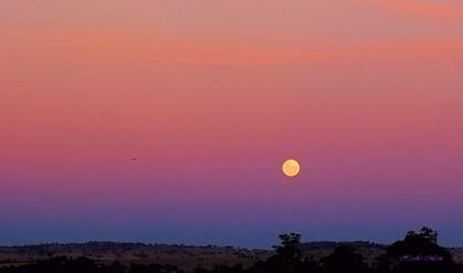 Hawk's moon