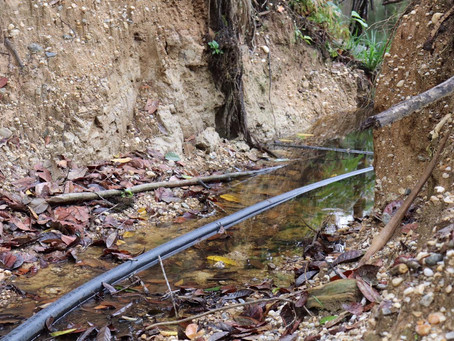 Se suspende actividades mineras a empresa Terraerth por incumplimiento a normativa ambiental