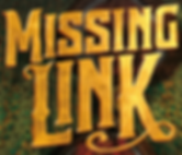 Missing Link Logo.png