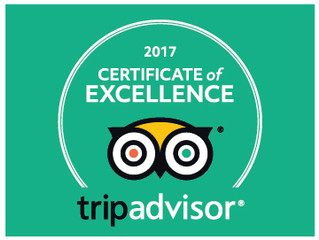 You LOVE Your Cinema! Brynamman Cinema receives their 2017 TripAdvisor Certificate of Excellence