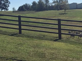 Corral Pipe Fence.jpg