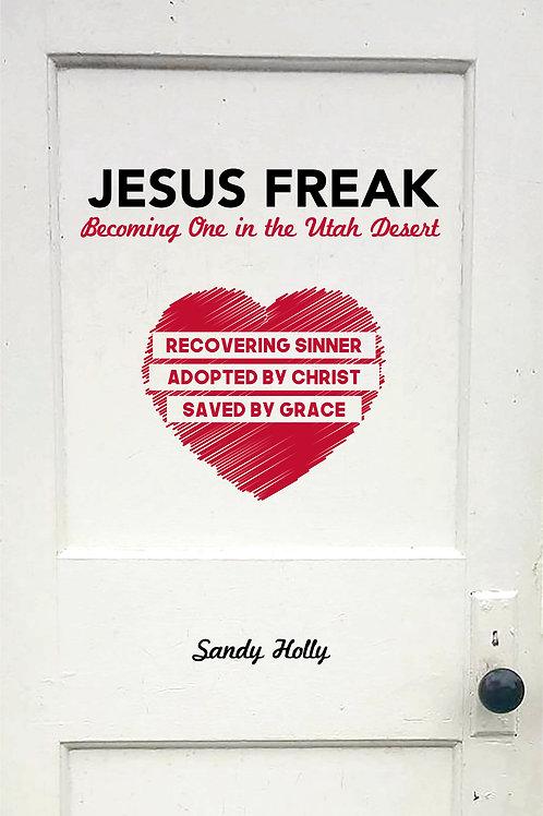 Jesus Freak eBook