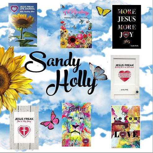 book meet Sandy.jpg