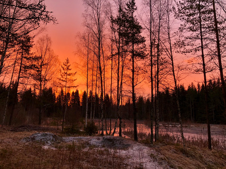 A New Dawn Everyday!