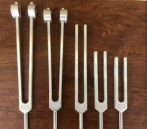 Photo 1- Biofield Forks- Wood Backround.