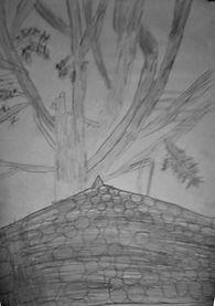 Wesley drawing.JPG