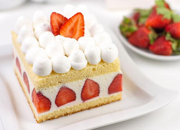 CREDI SPONGE CAKE CL