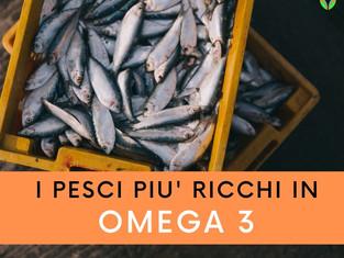 I pesci più ricchi in Omega3