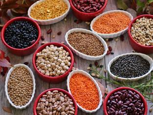 I legumi fonte importante di proteine vegetali