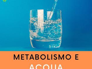 Metabolismo e acqua