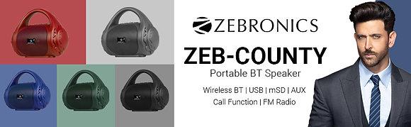 SPK- Zebronics PortableBluetooth SPK- County