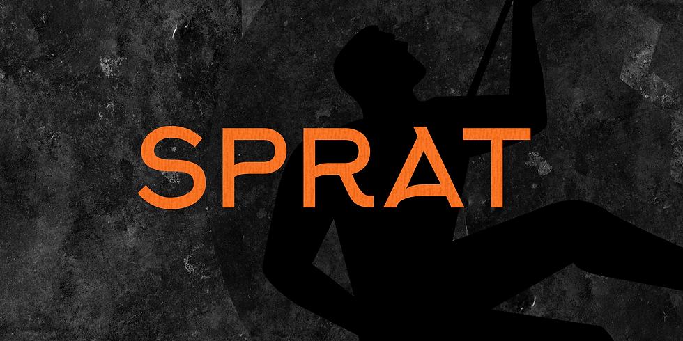 SPRAT ROPE ACCESS #20-048
