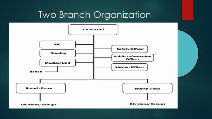 ICS TWO BRANCH ORGANIZATION