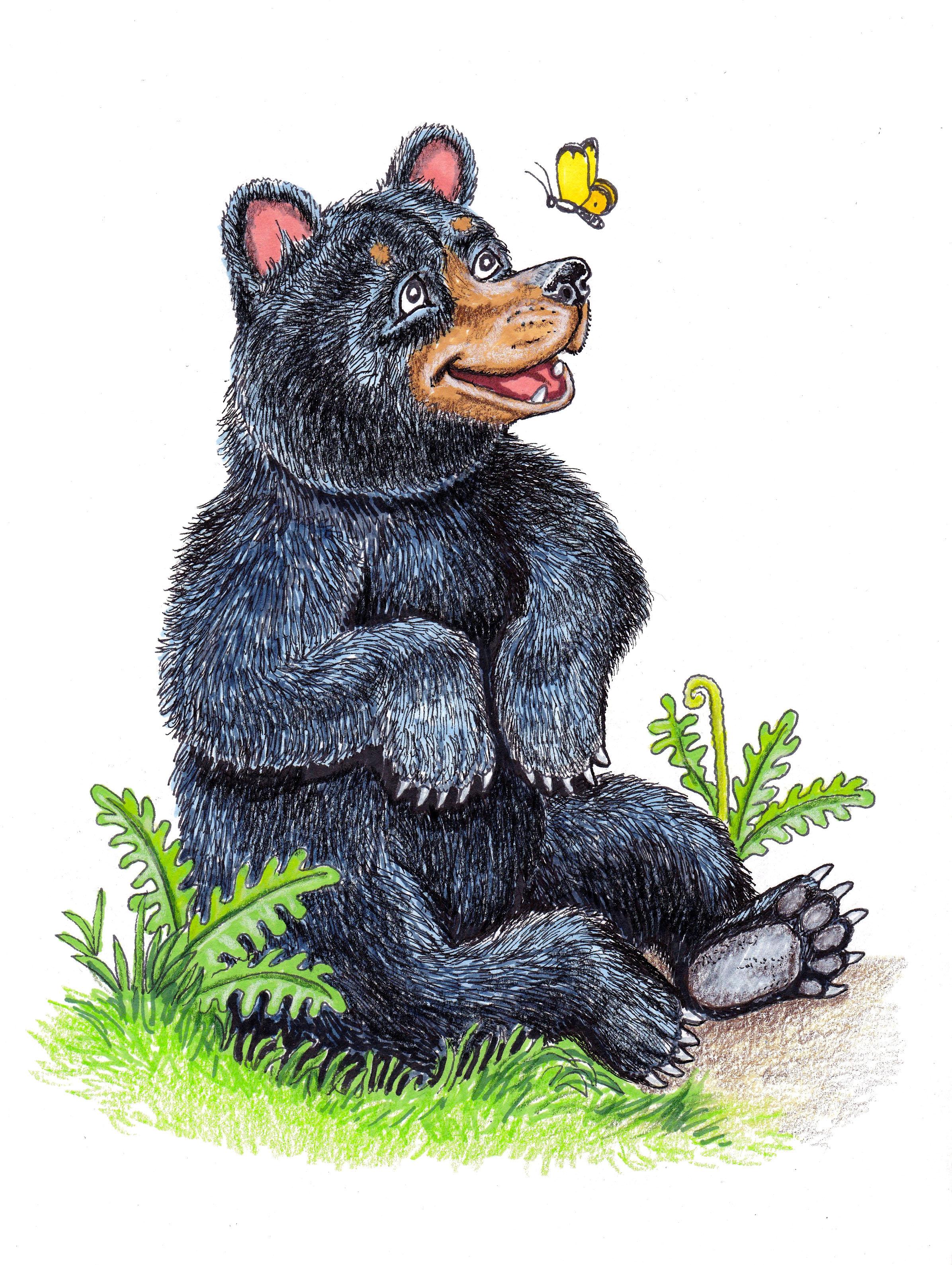 Bad Bear 1