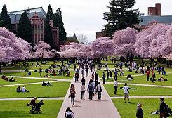 The University of Washington Campus