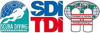 SDI banner