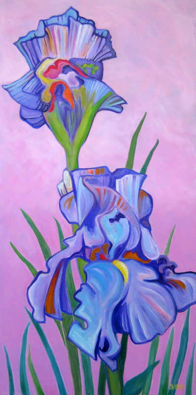 Irises in the Pink