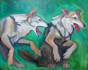 Dogs in a Green Field