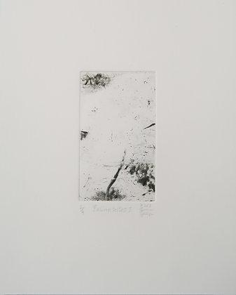 KARAGUEUZIAN Laurent, Palimpsestes I