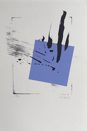 Marie-Josée Morgat Petit, T1 bleu