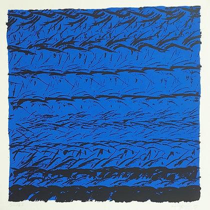 MORGAT PETIT M-J, Brises, bleu