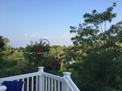 View from home owner's deck