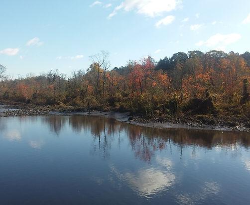 the creek during fall.jpg