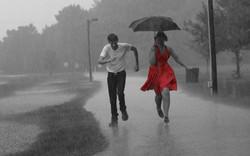 Zach & Ashley, Rainy Engagement