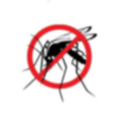 mosquito-control-services-250x250.jpg