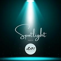 spotlight 3.png
