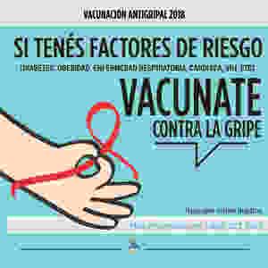 Vacuna antigripal anual
