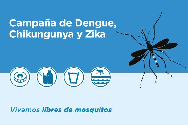 Guía Básica de Prevención del Dengue, el Zika y la Chikungunya - Defensoría del Pueblo Lanús