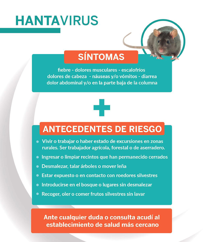 Hantavirus :  cuales son los sintomas?