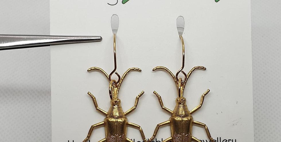 Longicorns - Brass & Stainless Steel