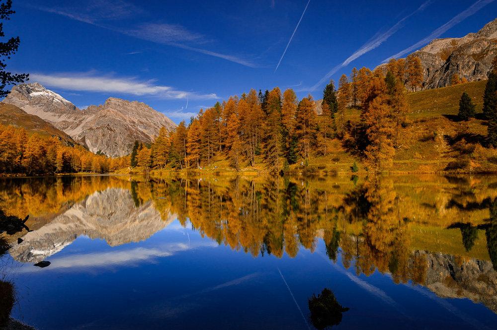 Goldener Oktober mit Nachtexkursion