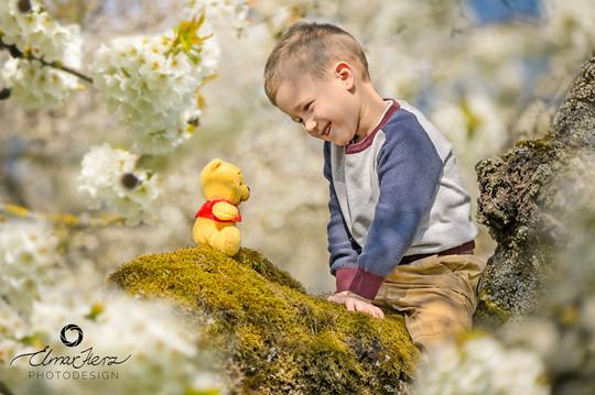Im Frühlingsblühen