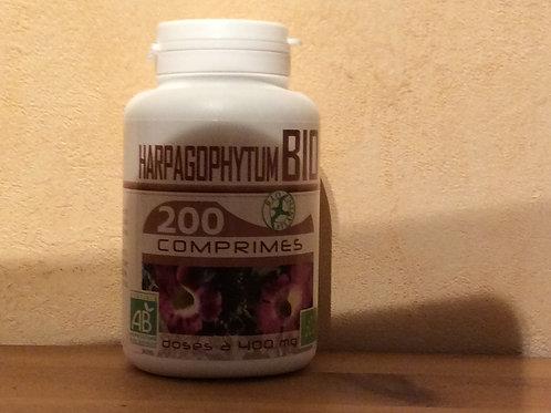 COMPRIMÉS D'HARPAGOPHYTUM 400 mg