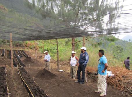 Proyecto Kahlúa