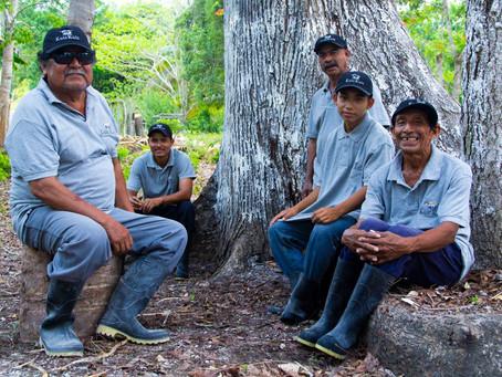 Aprovechamiento del alimento local en Calakmul