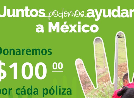 """HDI Seguros y Fondo para la Paz: """"Juntos podemos ayudar a México"""""""