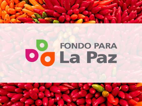 Noticias de Fondo | Septiembre 2020
