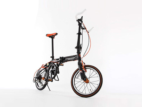 Portable Bicycle_1.jpg