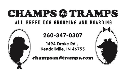 Champs & Tramps Dog Grooming