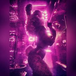 Neo noir Bunny - Cirque Le Soir